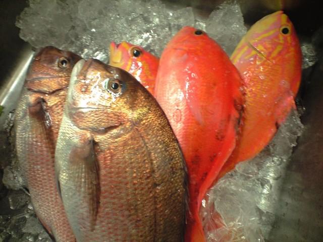 金曜日の鮮魚