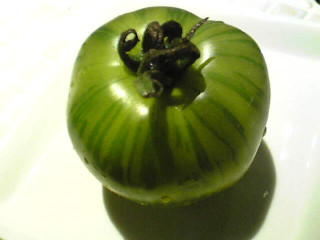 おもしろ野菜!!